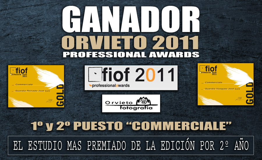 Ganadores en Orvieto 2011 - Winners in Orvieto 2011 Fiof Professional Awards